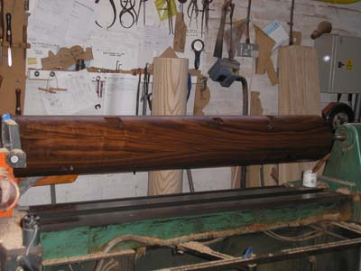 Black walnut dummy body
